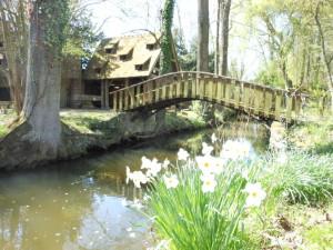 Parc Manoir du Pont