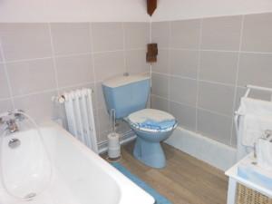 Salle de bain Leonard de Vinci